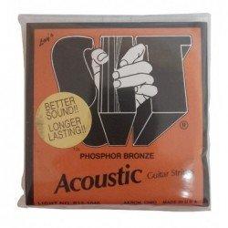 SIT 12 Cuerdas Acústica